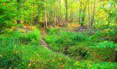 Trail Walk PIERREFONDS - en forêt de Compiègne_7_Mont St-Pierre_Mont Arcy_étangs de St-Pierre - Photo 4