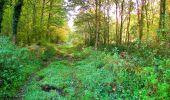 Trail Walk PIERREFONDS - en forêt de Compiègne_7_Mont St-Pierre_Mont Arcy_étangs de St-Pierre - Photo 68