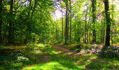 Trail Walk PIERREFONDS - en forêt de Compiègne_7_Mont St-Pierre_Mont Arcy_étangs de St-Pierre - Photo 76