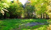 Trail Walk PIERREFONDS - en forêt de Compiègne_7_Mont St-Pierre_Mont Arcy_étangs de St-Pierre - Photo 130