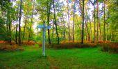 Trail Walk PIERREFONDS - en forêt de Compiègne_7_Mont St-Pierre_Mont Arcy_étangs de St-Pierre - Photo 10