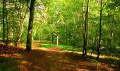 Trail Walk PIERREFONDS - en forêt de Compiègne_7_Mont St-Pierre_Mont Arcy_étangs de St-Pierre - Photo 90