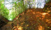 Trail Walk PIERREFONDS - en forêt de Compiègne_7_Mont St-Pierre_Mont Arcy_étangs de St-Pierre - Photo 124