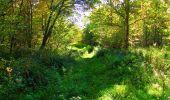 Trail Walk PIERREFONDS - en forêt de Compiègne_7_Mont St-Pierre_Mont Arcy_étangs de St-Pierre - Photo 113