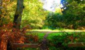Trail Walk PIERREFONDS - en forêt de Compiègne_7_Mont St-Pierre_Mont Arcy_étangs de St-Pierre - Photo 58