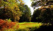 Trail Walk PIERREFONDS - en forêt de Compiègne_7_Mont St-Pierre_Mont Arcy_étangs de St-Pierre - Photo 109