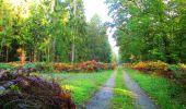 Trail Walk PIERREFONDS - en forêt de Compiègne_7_Mont St-Pierre_Mont Arcy_étangs de St-Pierre - Photo 22