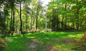 Trail Walk PIERREFONDS - en forêt de Compiègne_7_Mont St-Pierre_Mont Arcy_étangs de St-Pierre - Photo 74