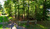 Trail Walk PIERREFONDS - en forêt de Compiègne_7_Mont St-Pierre_Mont Arcy_étangs de St-Pierre - Photo 103