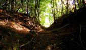 Trail Walk PIERREFONDS - en forêt de Compiègne_7_Mont St-Pierre_Mont Arcy_étangs de St-Pierre - Photo 123