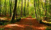 Trail Walk PIERREFONDS - en forêt de Compiègne_7_Mont St-Pierre_Mont Arcy_étangs de St-Pierre - Photo 80