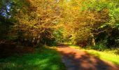 Trail Walk PIERREFONDS - en forêt de Compiègne_7_Mont St-Pierre_Mont Arcy_étangs de St-Pierre - Photo 59