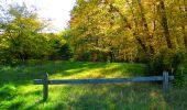 Trail Walk PIERREFONDS - en forêt de Compiègne_7_Mont St-Pierre_Mont Arcy_étangs de St-Pierre - Photo 120