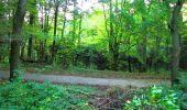 Trail Walk PIERREFONDS - en forêt de Compiègne_7_Mont St-Pierre_Mont Arcy_étangs de St-Pierre - Photo 1