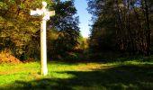 Trail Walk PIERREFONDS - en forêt de Compiègne_7_Mont St-Pierre_Mont Arcy_étangs de St-Pierre - Photo 111