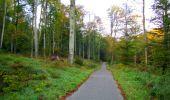 Trail Walk PIERREFONDS - en forêt de Compiègne_7_Mont St-Pierre_Mont Arcy_étangs de St-Pierre - Photo 144