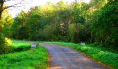 Trail Walk PIERREFONDS - en forêt de Compiègne_7_Mont St-Pierre_Mont Arcy_étangs de St-Pierre - Photo 64