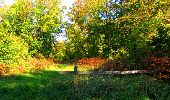 Trail Walk PIERREFONDS - en forêt de Compiègne_7_Mont St-Pierre_Mont Arcy_étangs de St-Pierre - Photo 121
