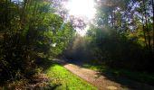 Trail Walk PIERREFONDS - en forêt de Compiègne_7_Mont St-Pierre_Mont Arcy_étangs de St-Pierre - Photo 60