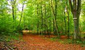 Randonnée Marche CORCY - en forêt de Retz_58_le bois de Hautwison - Photo 45