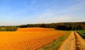 Randonnée Marche CORCY - en forêt de Retz_58_le bois de Hautwison - Photo 70