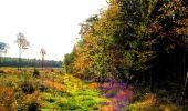 Randonnée Marche CORCY - en forêt de Retz_58_le bois de Hautwison - Photo 64