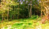 Randonnée Marche CORCY - en forêt de Retz_58_le bois de Hautwison - Photo 63