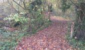Randonnée Marche CORCY - en forêt de Retz_58_le bois de Hautwison - Photo 81