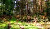Randonnée Marche CORCY - en forêt de Retz_58_le bois de Hautwison - Photo 40