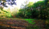 Randonnée Marche CORCY - en forêt de Retz_58_le bois de Hautwison - Photo 57