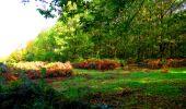 Randonnée Marche CORCY - en forêt de Retz_58_le bois de Hautwison - Photo 39