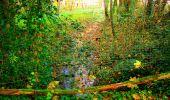 Randonnée Marche CORCY - en forêt de Retz_58_le bois de Hautwison - Photo 79
