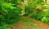 Randonnée Marche CORCY - en forêt de Retz_58_le bois de Hautwison - Photo 56
