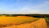 Randonnée Marche CORCY - en forêt de Retz_58_le bois de Hautwison - Photo 71