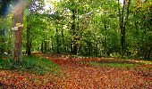 Randonnée Marche CORCY - en forêt de Retz_58_le bois de Hautwison - Photo 33