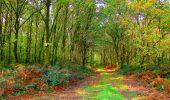 Randonnée Marche CORCY - en forêt de Retz_58_le bois de Hautwison - Photo 48