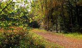 Randonnée Marche CORCY - en forêt de Retz_58_le bois de Hautwison - Photo 28