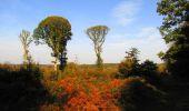 Randonnée Marche CORCY - en forêt de Retz_58_le bois de Hautwison - Photo 24