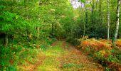 Randonnée Marche CORCY - en forêt de Retz_58_le bois de Hautwison - Photo 58