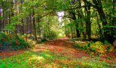 Randonnée Marche CORCY - en forêt de Retz_58_le bois de Hautwison - Photo 36