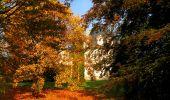 Randonnée Marche CORCY - en forêt de Retz_58_le bois de Hautwison - Photo 11
