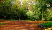 Randonnée Marche CORCY - en forêt de Retz_58_le bois de Hautwison - Photo 34
