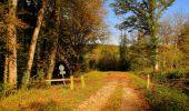 Randonnée Marche CORCY - en forêt de Retz_58_le bois de Hautwison - Photo 30