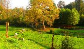 Randonnée Marche CORCY - en forêt de Retz_58_le bois de Hautwison - Photo 26
