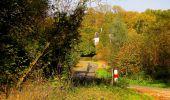 Randonnée Marche CORCY - en forêt de Retz_58_le bois de Hautwison - Photo 29