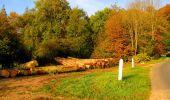 Randonnée Marche CORCY - en forêt de Retz_58_le bois de Hautwison - Photo 77
