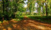 Randonnée Marche CORCY - en forêt de Retz_58_le bois de Hautwison - Photo 31