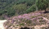 Trail Mountain bike Hondarribia - Esp-Jaizkibel-20110908 - Photo 7