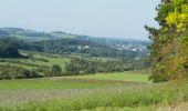 Randonnée Marche Rochefort - LAVAUX-Ste-ANNE (Le Merdier) - Photo 5