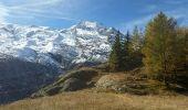 Trail Walk SAINTE-FOY-TARENTAISE - Le Monal - Photo 5